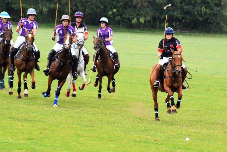 AROUND THE COUNTRY:  Novice players have huge impact on Bunclody Polo Festival