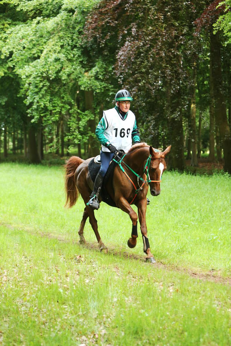 ENDURANCE:  MacGuinness and Bray set for European Championships