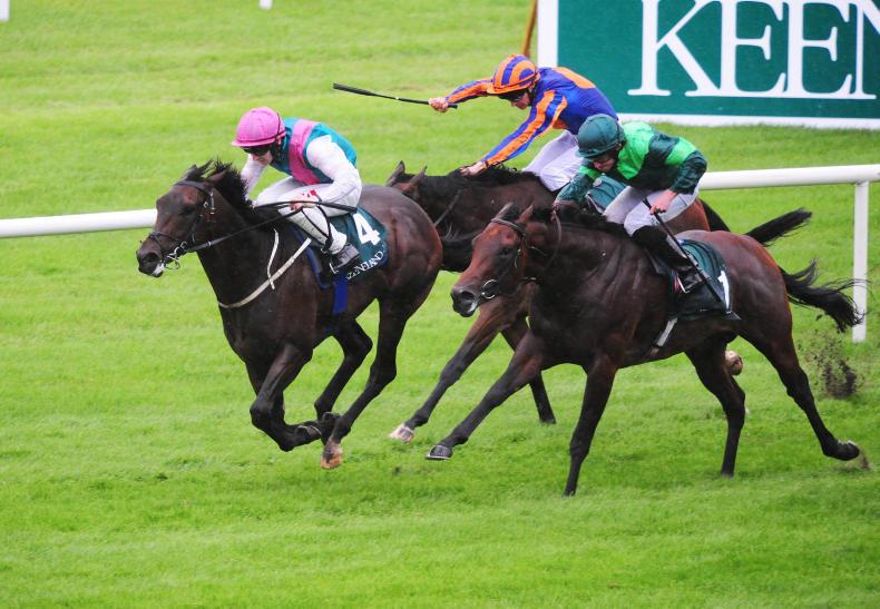 MONDAY OUTLOOK: Friday evening fixtures worth pursuing at the Curragh