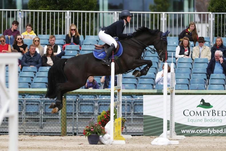 DUBLIN HORSE SHOW 2019:  Roulston rewarded with RDS Bursary