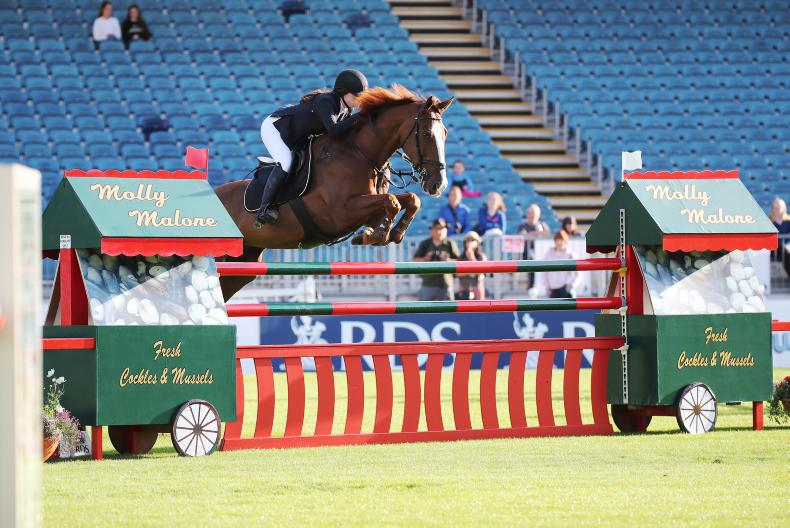 DUBLIN HORSE SHOW 2019:   Top marks for Soden and Ard Leaderman