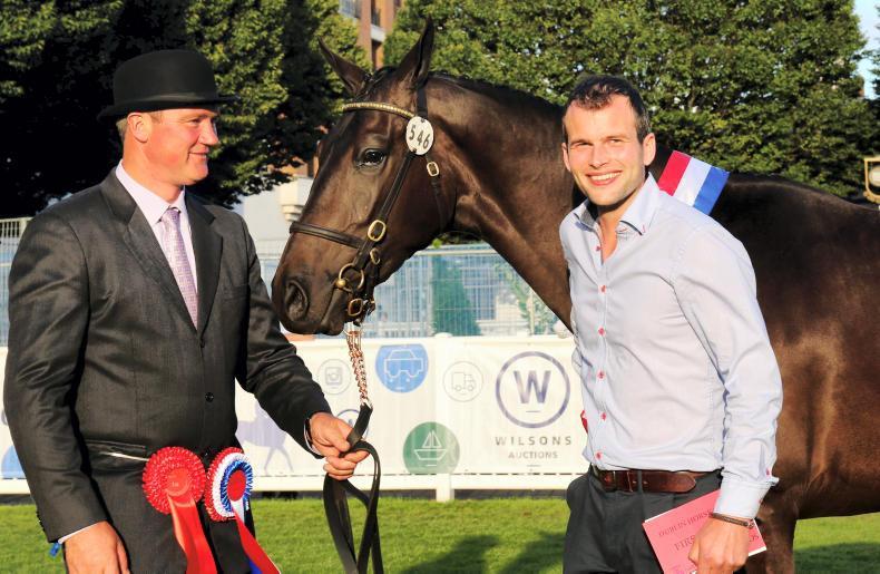 DUBLIN HORSE SHOW 2019: Memorable RDS visit for Carlisle