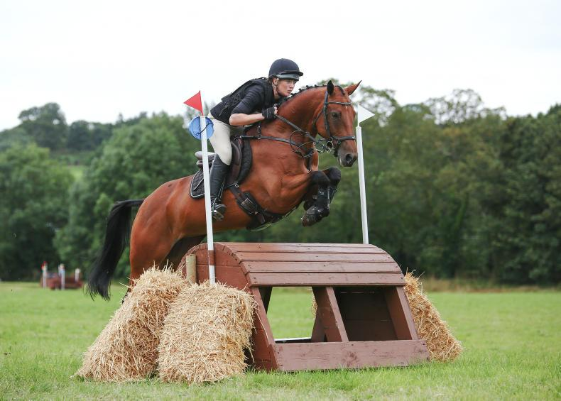 EVENTING:   Ward proves Sensation with win