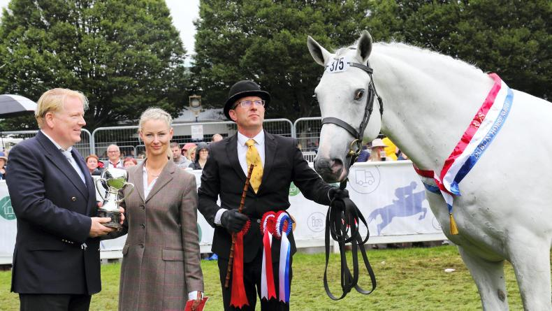 DUBLIN HORSE SHOW 2019: Cappa Aristocrat is a lord in Dublin