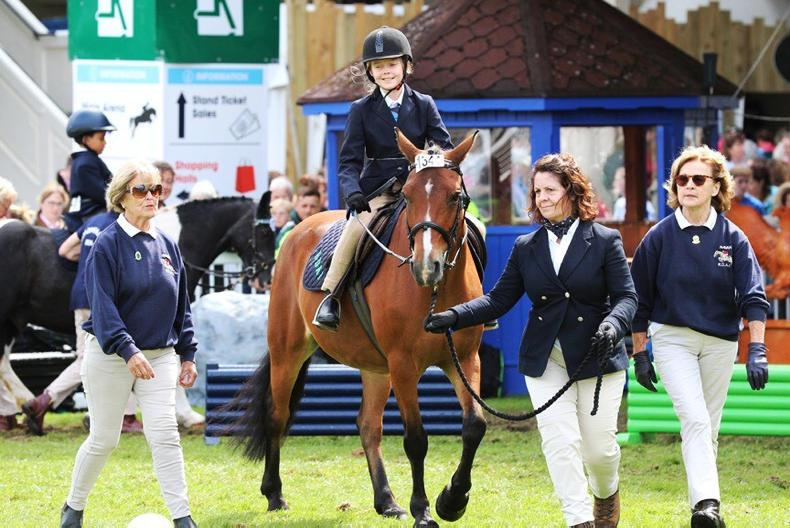 DUBLIN HORSE SHOW 2019: RDAI member enjoy wonderful day at RDS