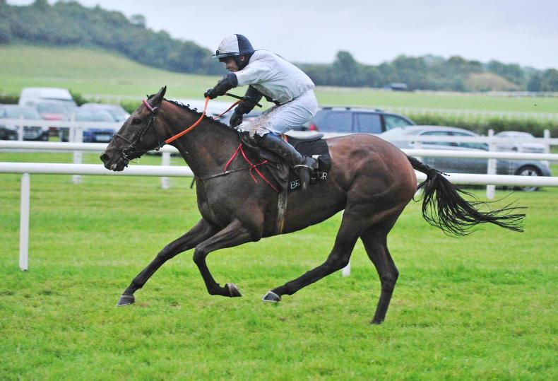 VIEW FROM ABOVE: Don't Bet On It records northern success at Kilbeggan