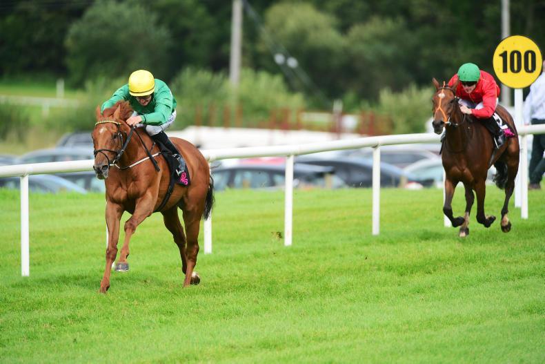TRAMORE SATURDAY: Pearl Warrior ready to fight following Sligo success