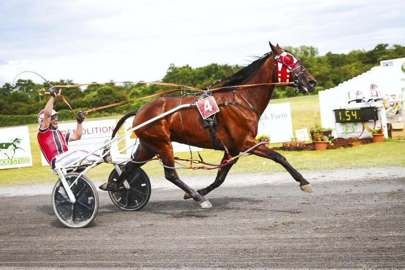 HARNESS RACING: Miraculous sets new track record
