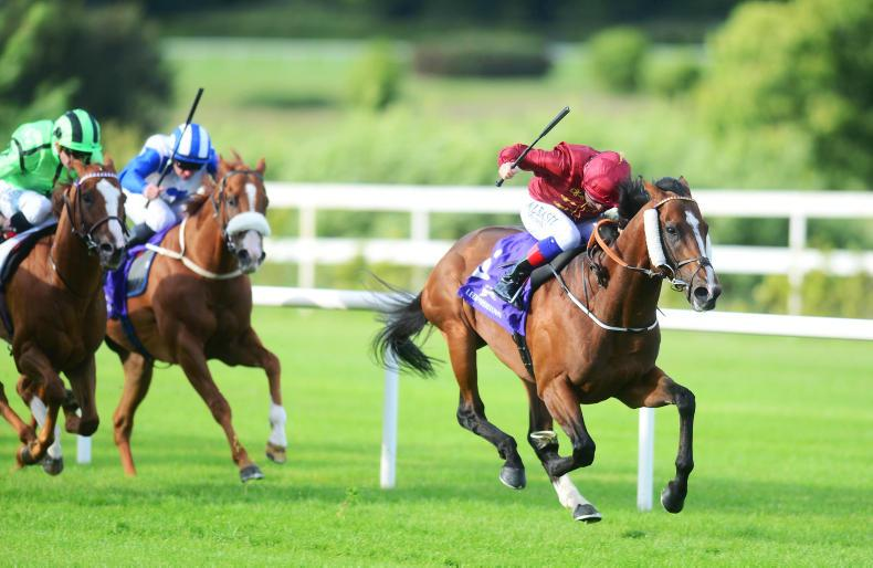 GOFFS UK PREMIER  YEARLING SALE: Potential group winners for sale