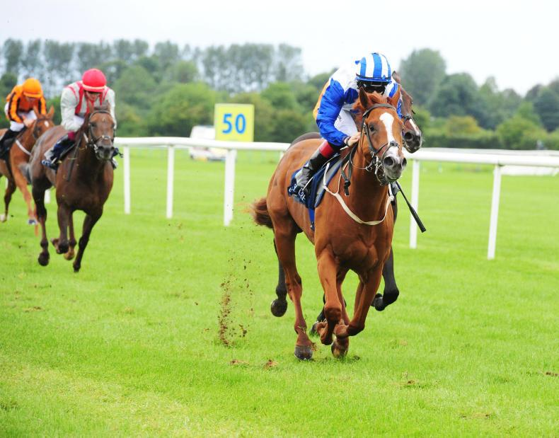 TIPPERARY SUNDAY: Justifier steps-up in style
