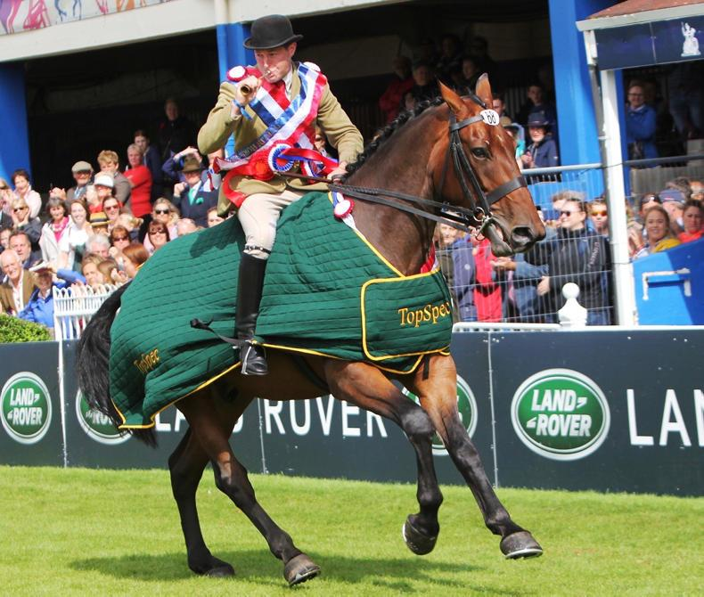 DUBLIN HORSE SHOW 2019:  Clean sweep for Casey