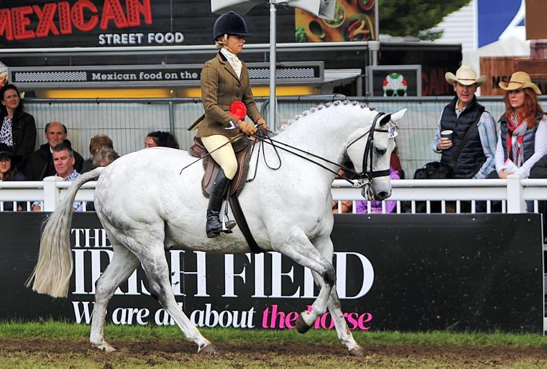 DUBLIN HORSE SHOW 2019: Double glory for Rees and Tooreeny Lad