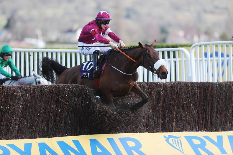 NEWS: Elliott welcomes mares' chase at Festival