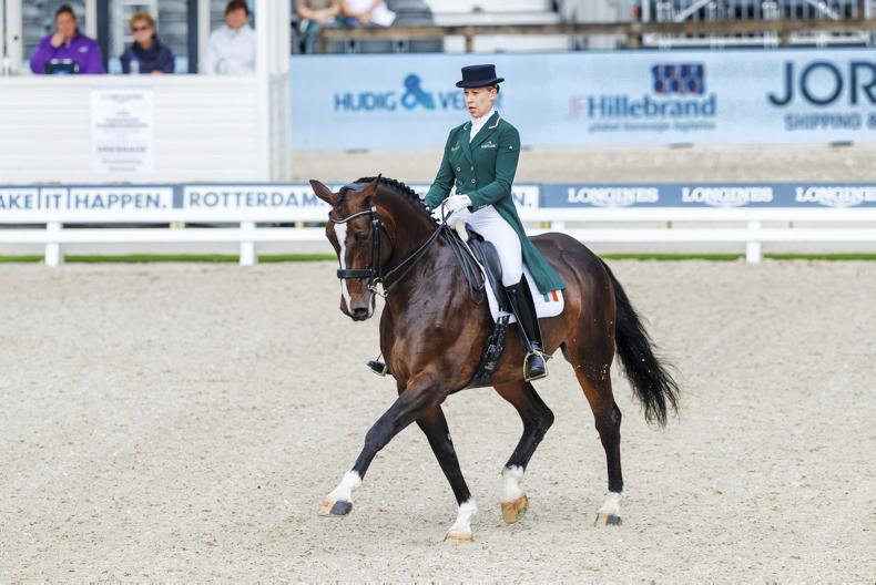 DRESSAGE: Germans leading after day one in Rotterdam