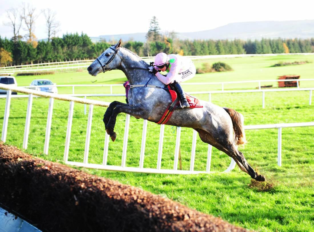 LEOPARDSTOWN SATURDAY: Bold show expected from Ballycasey