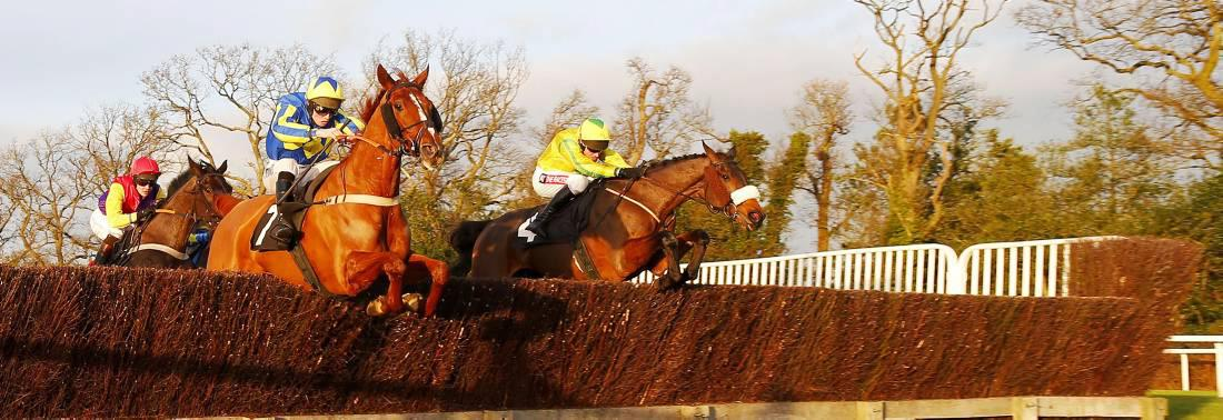 NICK MORDIN: The Young Master is Gold Cup class