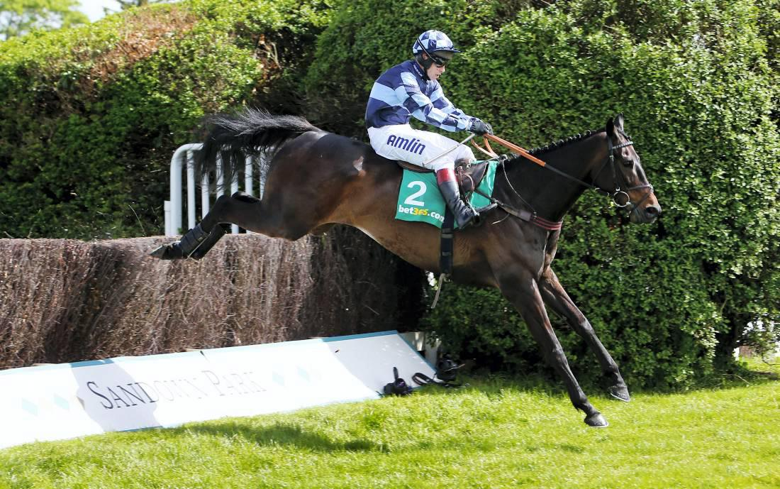 BRITISH PREVIEW: King George rivals can't hold a candle to Menorah