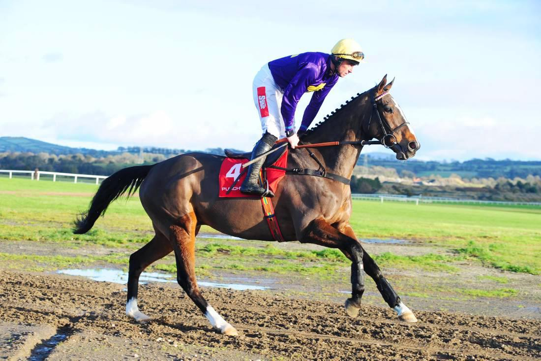 LEOPARDSTOWN SUNDAY: Lord to rule in Lexus
