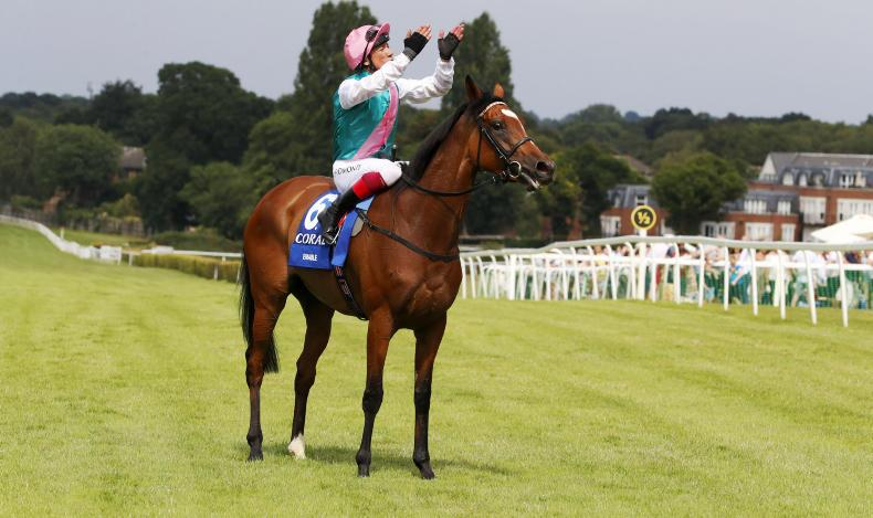 It all started at Newcastle – Enable's path to greatness
