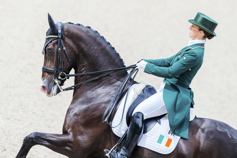 DRESSAGE: Another record and fifth place for Judy Reynolds in Rotterdam