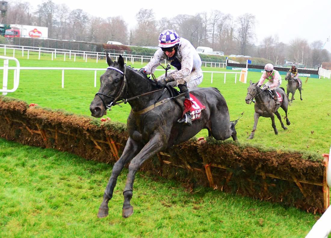 Brief pedigree notes from the recent graded action