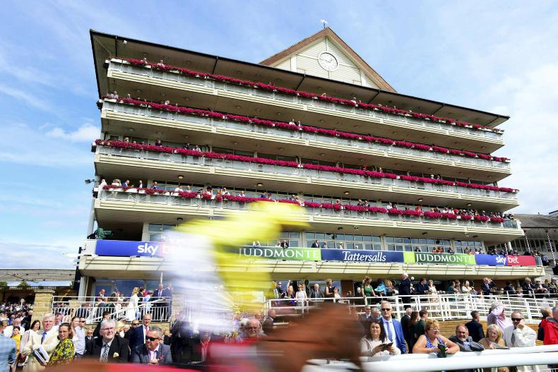 PREVIEW: Back these Ebor runners at 16/1 and 25/1