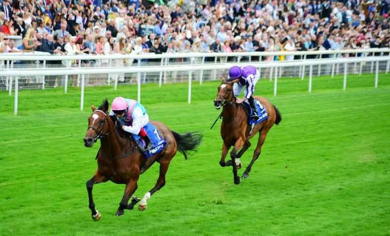 YORK THURSDAY: Enable stuns with power and heart