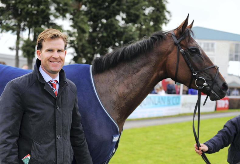 BREEDING INSIGHTS: Group 1 on the cards for Terebellum