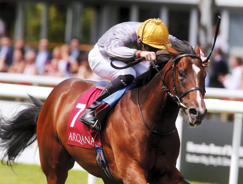 ARQANA YEARLING SALE: Fillies dominate at v.2 Sale