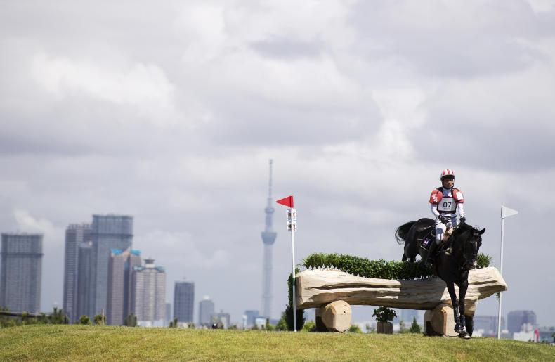HORSE SENSE: FEI study equine health at Tokyo