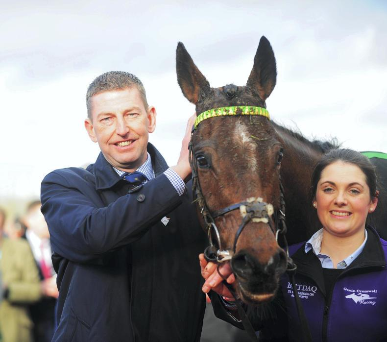 NEWS: Champion Hurdle winner Espoir D'Allen put down