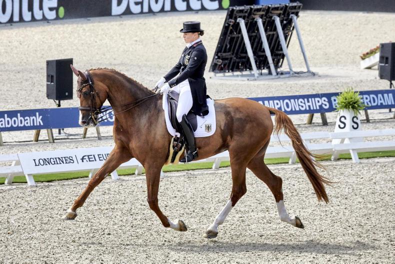 DRESSAGE: Germany win 24th European gold medal