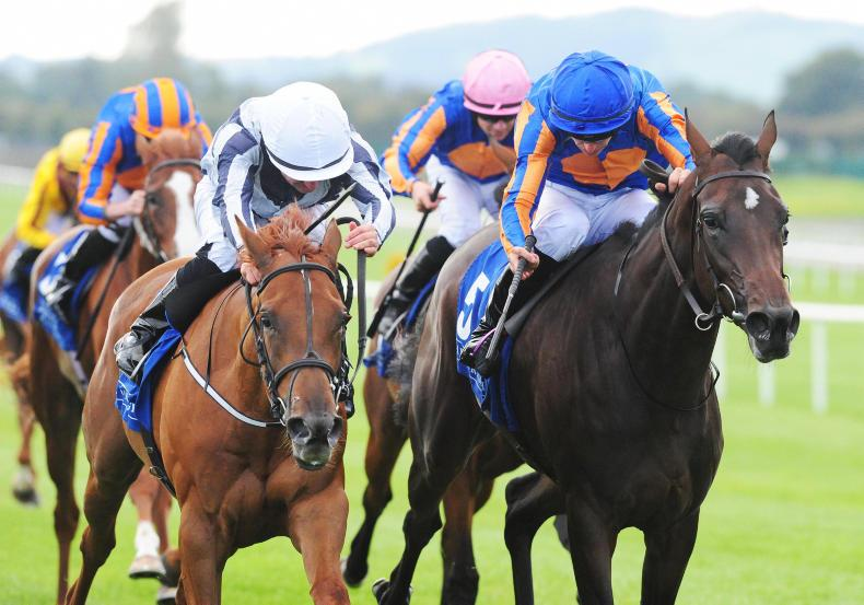 CURRAGH FRIDAY: Armory and Alpine Star capture feature races