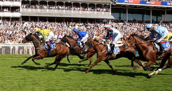 Mustajeer takes historic running of Ebor for Ireland