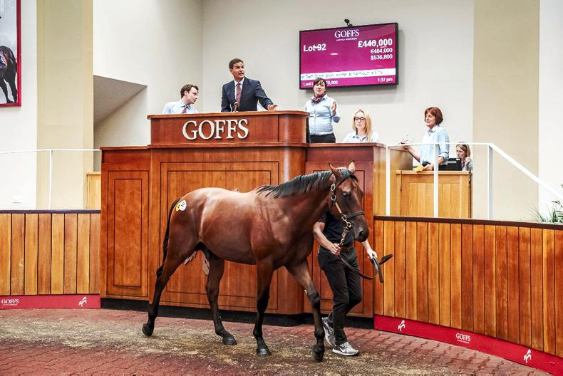 SALES: Coolmore buys record-priced £440,000 Kingman colt