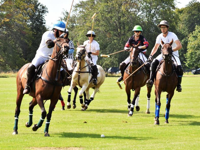 POLO:  Exciting Freebooters final goes to the wire