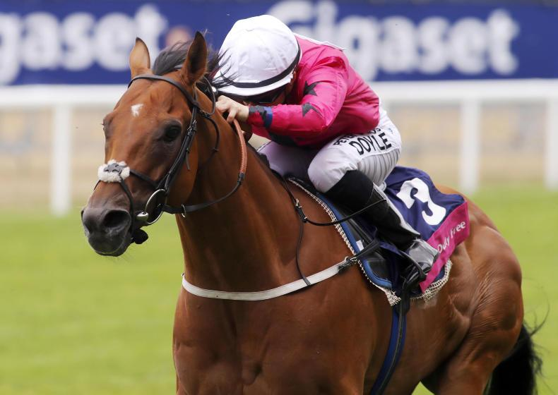 BRITISH PREVIEW: Tarboosh is under the radar but worth a bet