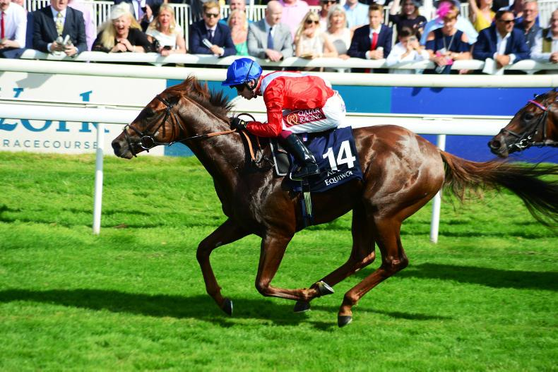 BREEDING INSIGHTS: No Threat to Ringfort's continuing success