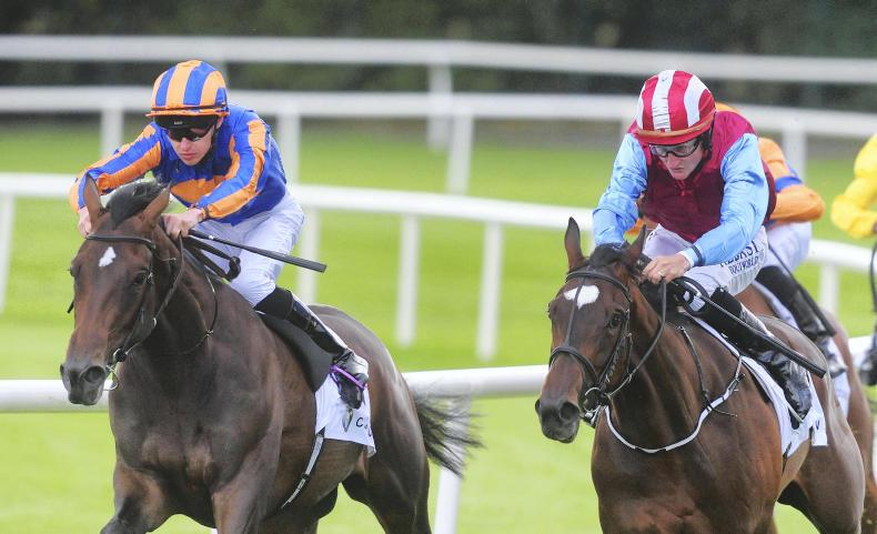 CORK SUNDAY: Chasing The Dawn looks set to score for Harrington