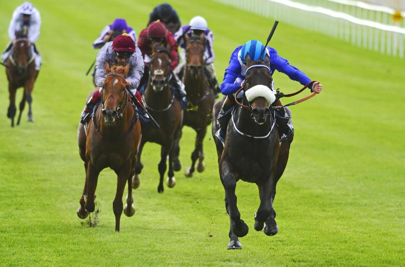SALES: Classic relations on offer at Ascot