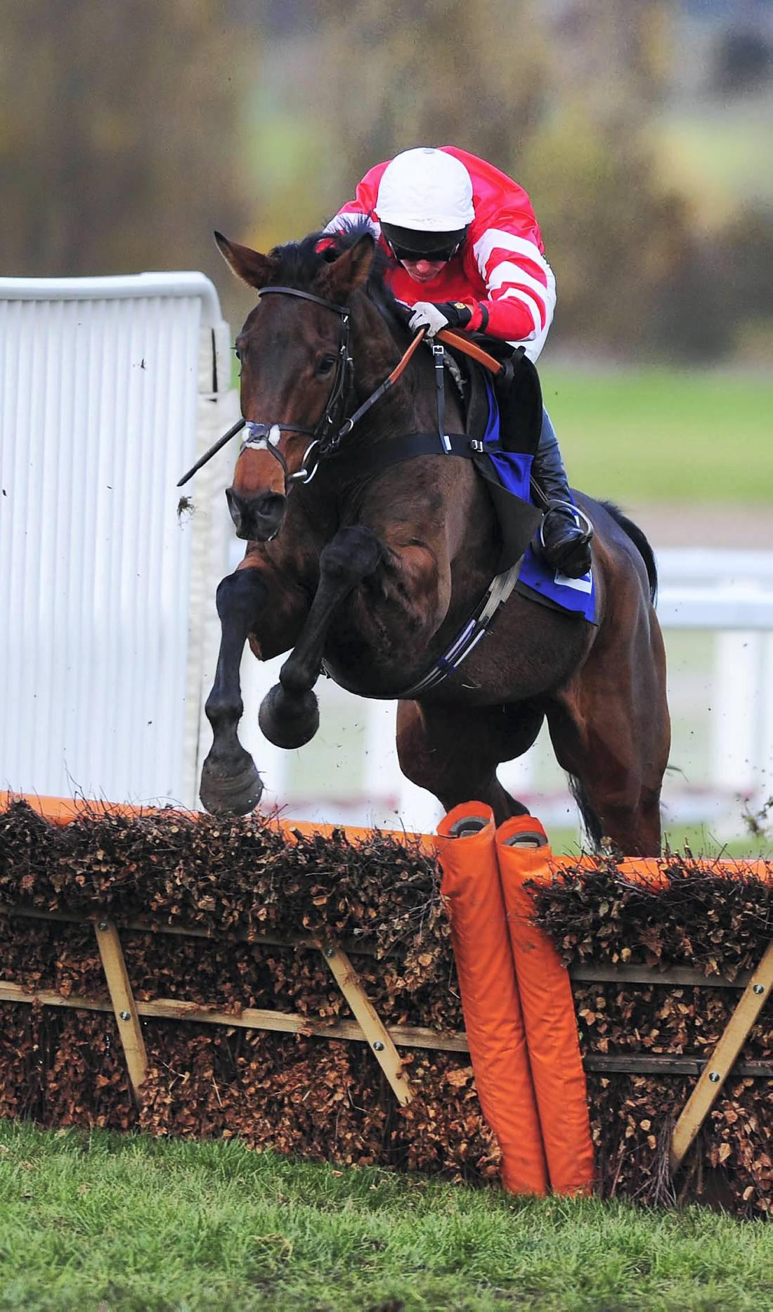 Coneygree too free for RSA