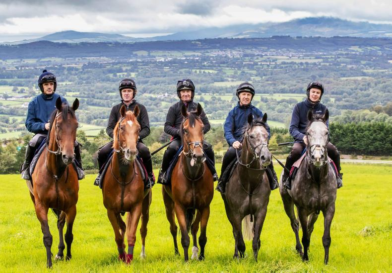 McCoy joins Smullen race contenders in workout at O'Brien yard