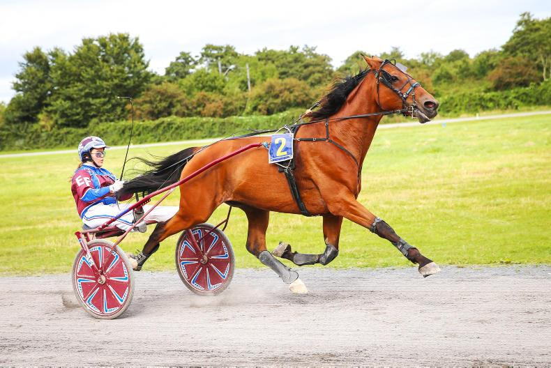 HARNESS RACING: Erin and Tamalou too tough from the front