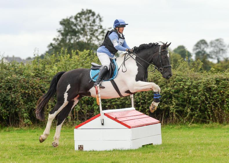 AIRC EVENTING: Back to back wins for Feleki