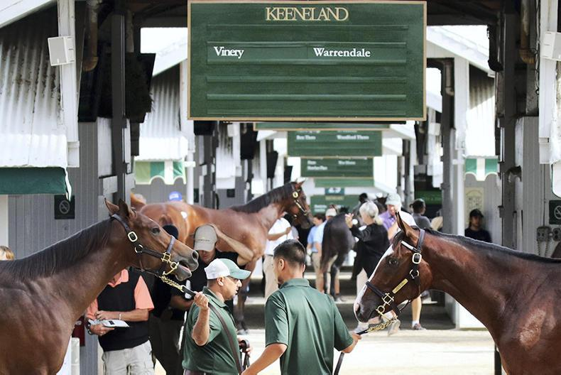 Massive sale at Keeneland starts on Monday
