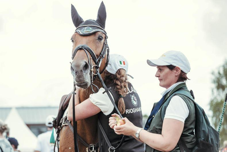 'Rua is our horse of a lifetime' - Kinsella