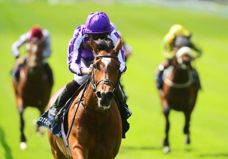 IRISH CHAMPIONS WEEKEND: Magical and Magna set to lead Ballydoyle line