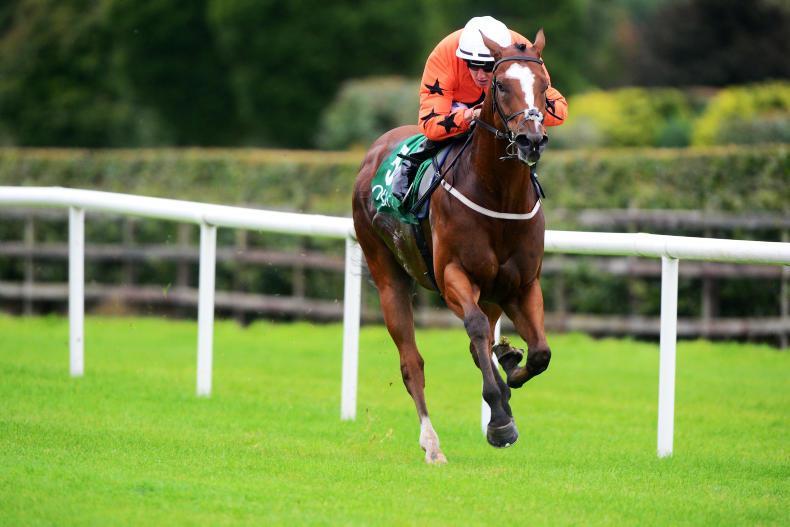 NAVAN SATURDAY PREVIEW: No Spoofing, O'Keeffe's charge can thrive back in Navan