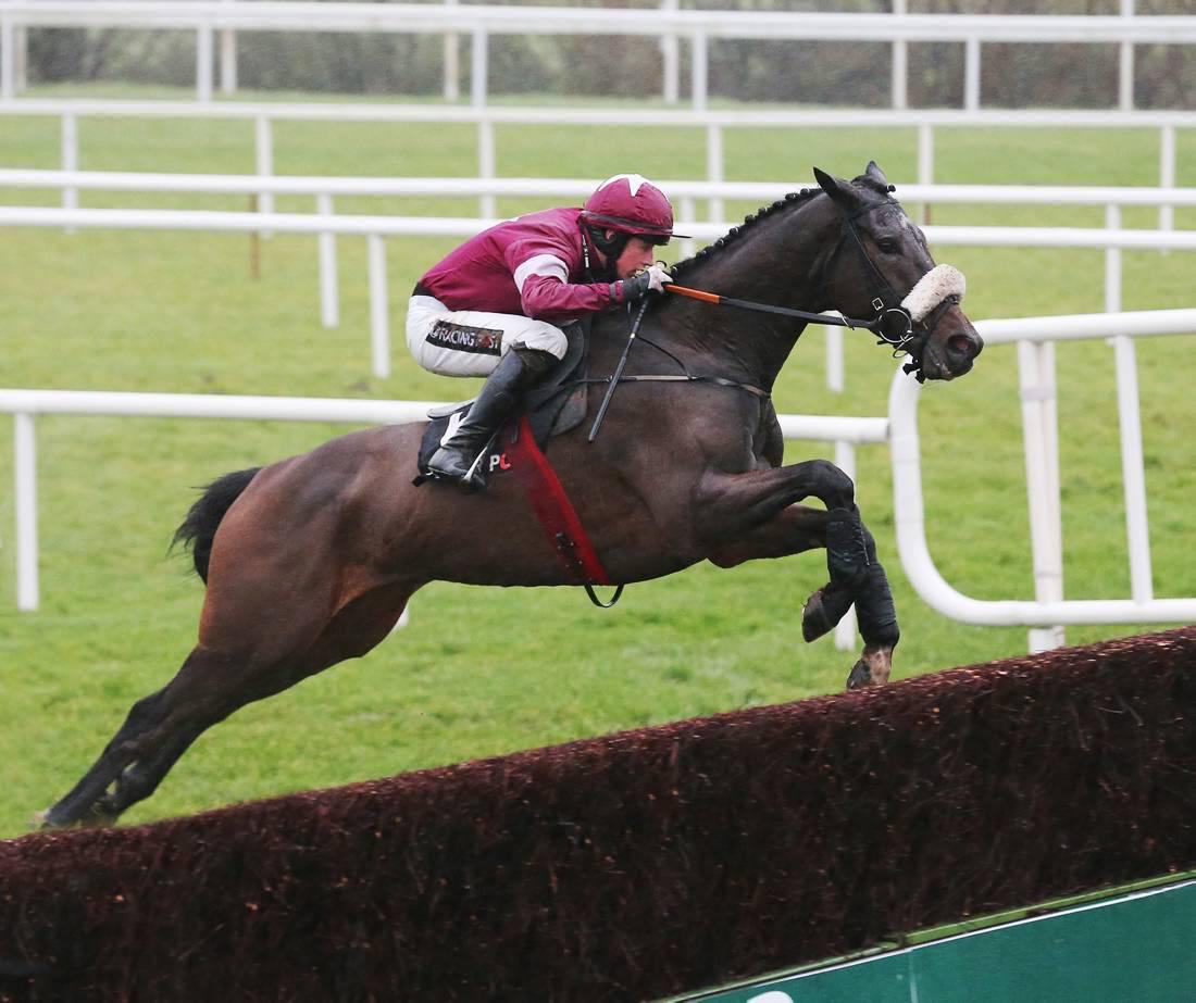 PEDIGREE ANALYSIS: Clarcam wins Grade 1 chase at the age of four