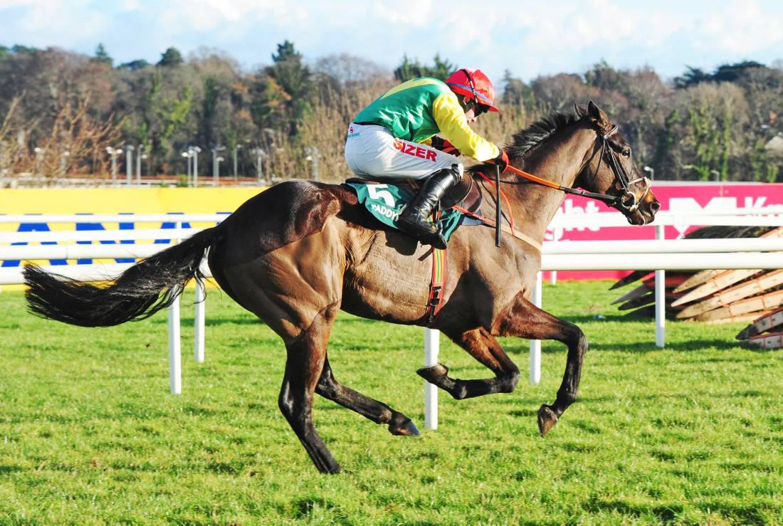PEDIGREE ANALYSIS: Grade 1 success for Midnight Legend's son Sizing John